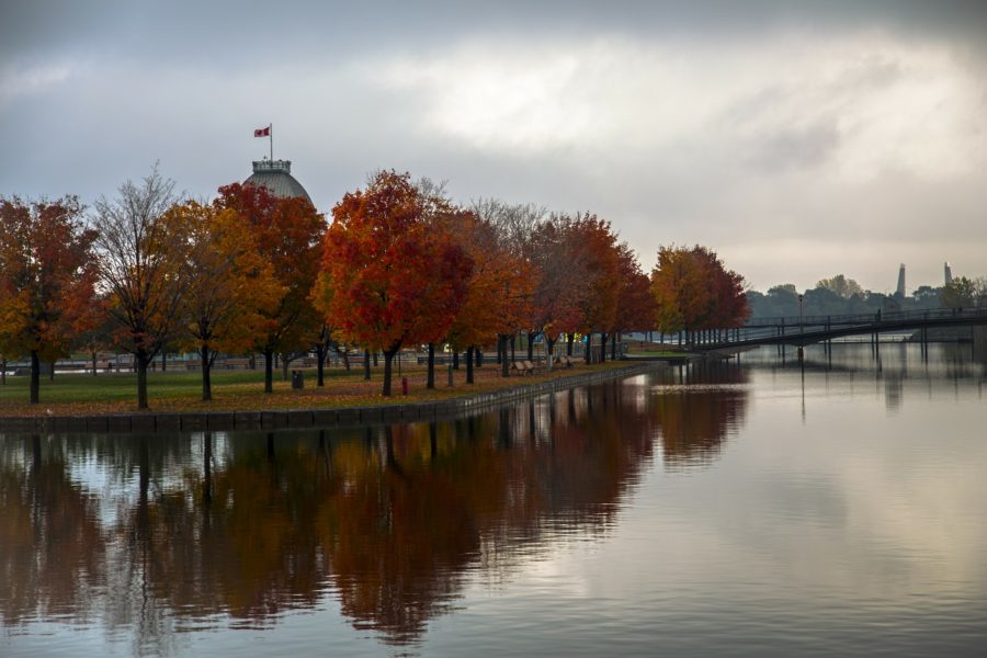 fall in montreal